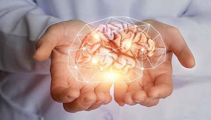 Preserves Your Brain Health