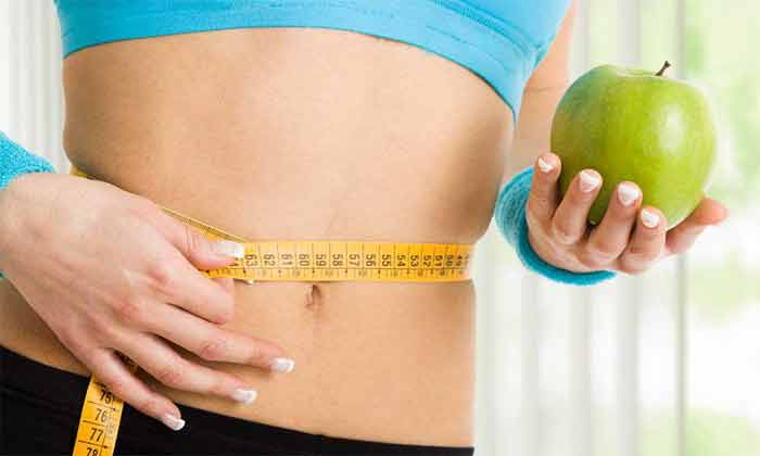 Which Diet Plan Loses The Most Weight