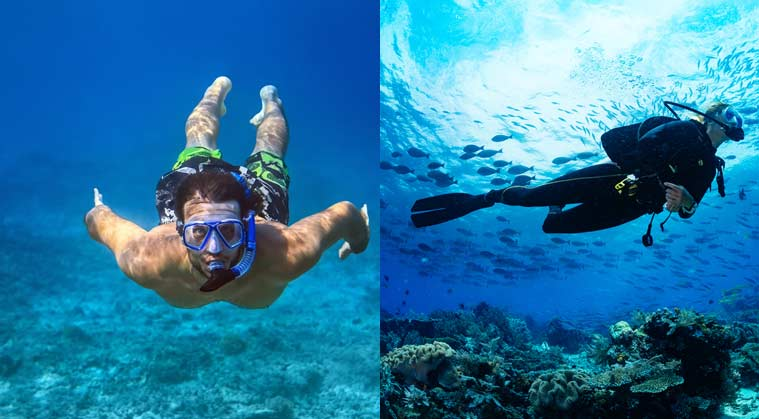 Basics Of Snorkeling And Scuba Diving