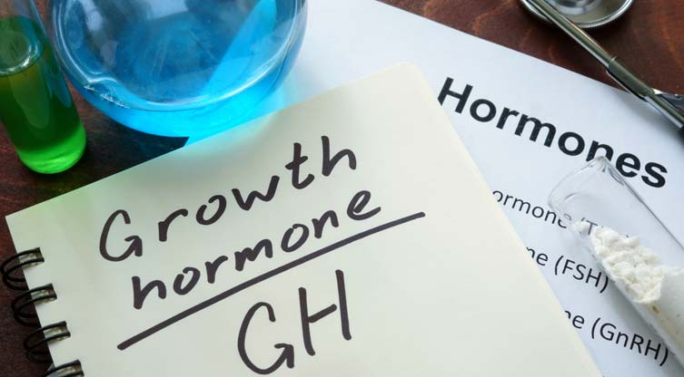 How Does Growth Hormone Affect Protein Synthesis