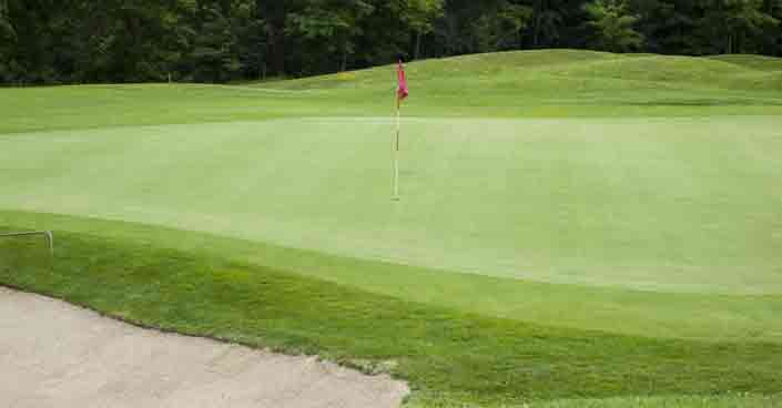 Why Golf Greens Are So Important And How They Differ From Other Grass Surfaces