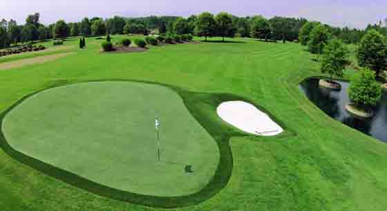 Why It's Important To Maintain Your Greens Well For Both Players And Spectators